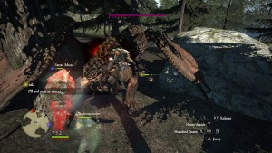 In it's best moments, Dragons Dogma is a game about punshing a dragon in the face