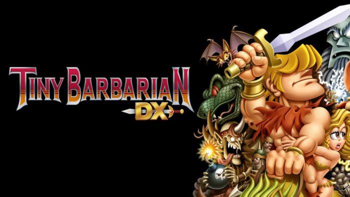 TINY BARBARIAN DX (2013)