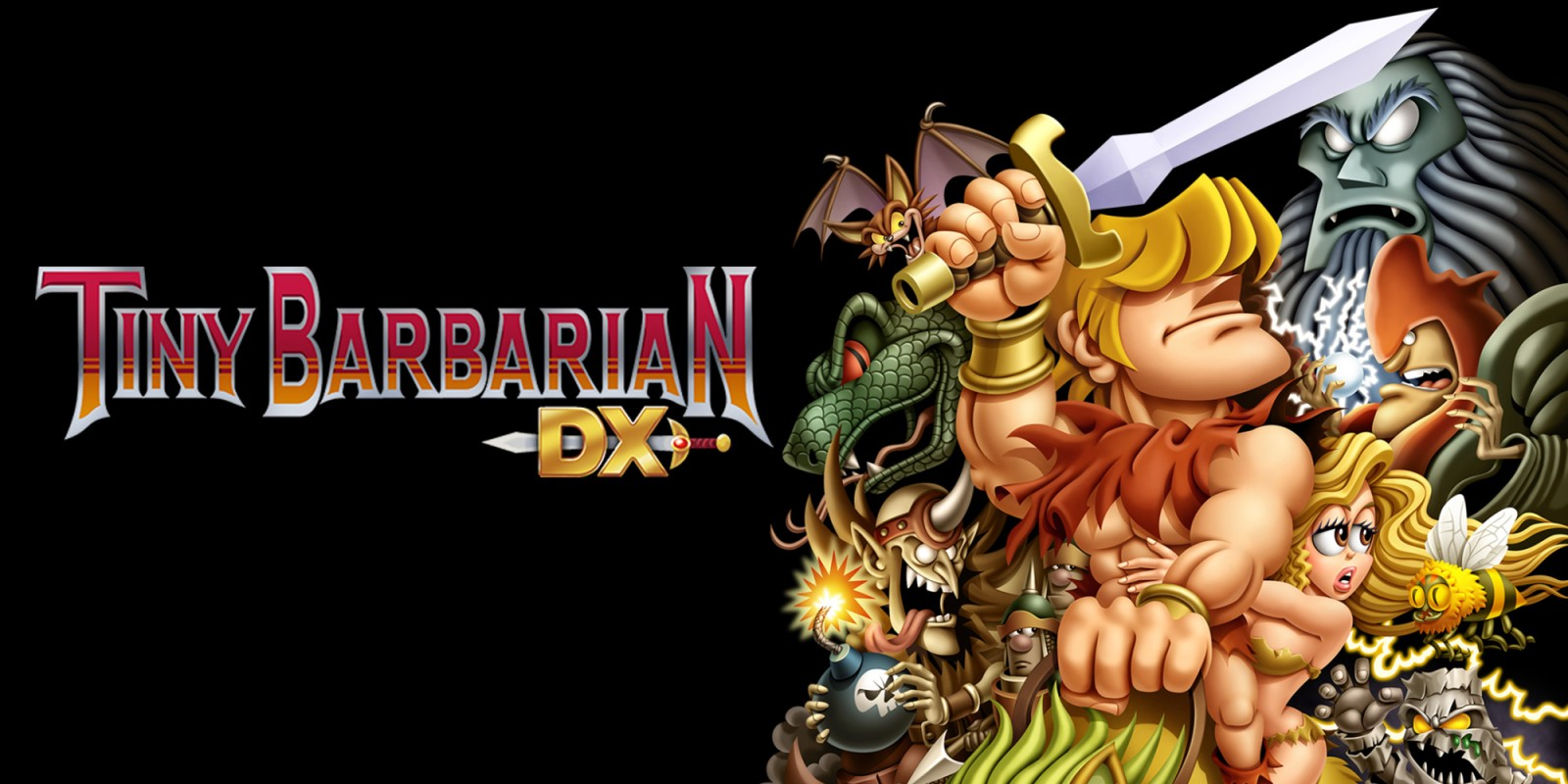 TINY BARBARIAN DX (2013)