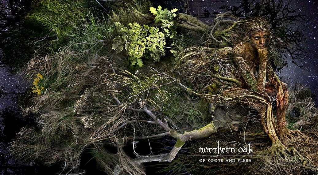 NORTHERN OAK – Of Roots and Flesh