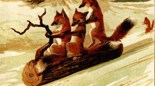 Olde Fox Den