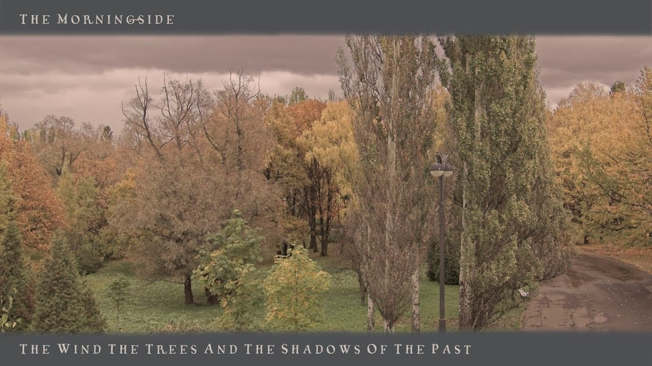 THE MORNINGSIDE – The Wind, The Trees And The Shadows Of The Past