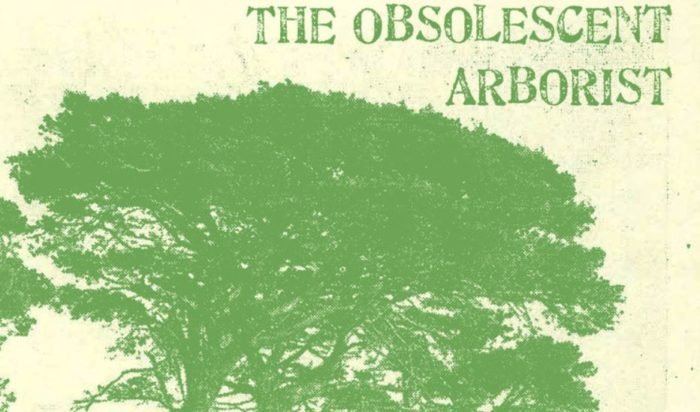 The Obsolescent Arborist – Tree, Timber and Forest